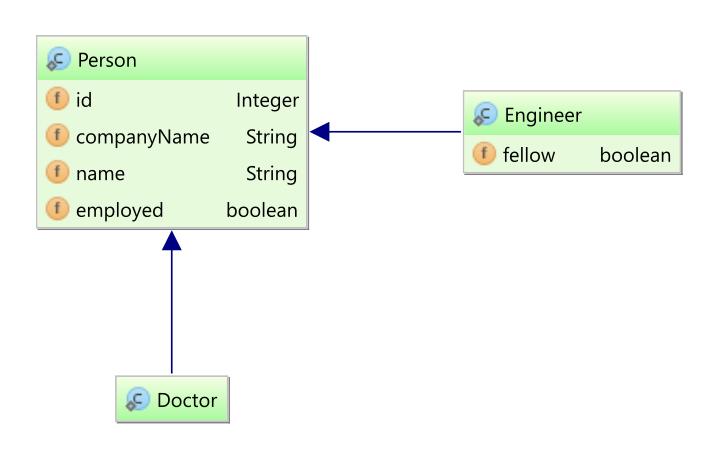 Entity class diagram