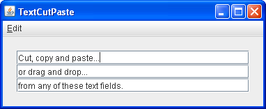 A snapshot of the TextCutPaste demo.